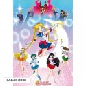 POSTER SAILOR MOON GUERRERAS 61x91cm