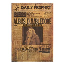 POSTER HARRY POTTER THE DAILY PROPHET ALBUS DUMBLEDORE 10 YEARS 43x30cm
